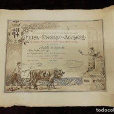 Arte: ANTIGUO GRABADO EMITIDO POR EL AYUNTAMIENTO DE BARCELONA. FERIA, CONCURSO, AGRÍCOLA. AÑO 1898.. Lote 140411166
