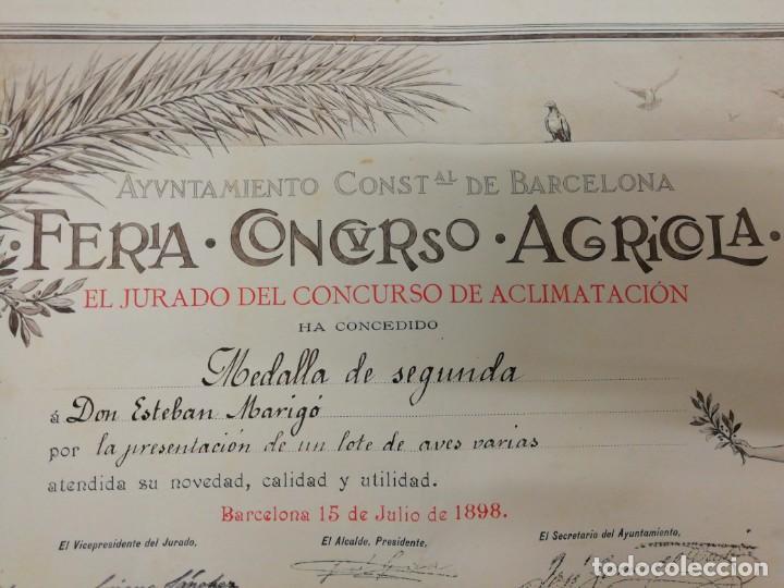 Arte: Antiguo grabado emitido por el Ayuntamiento de Barcelona. Feria, concurso, agrícola. Año 1898. - Foto 7 - 140411166