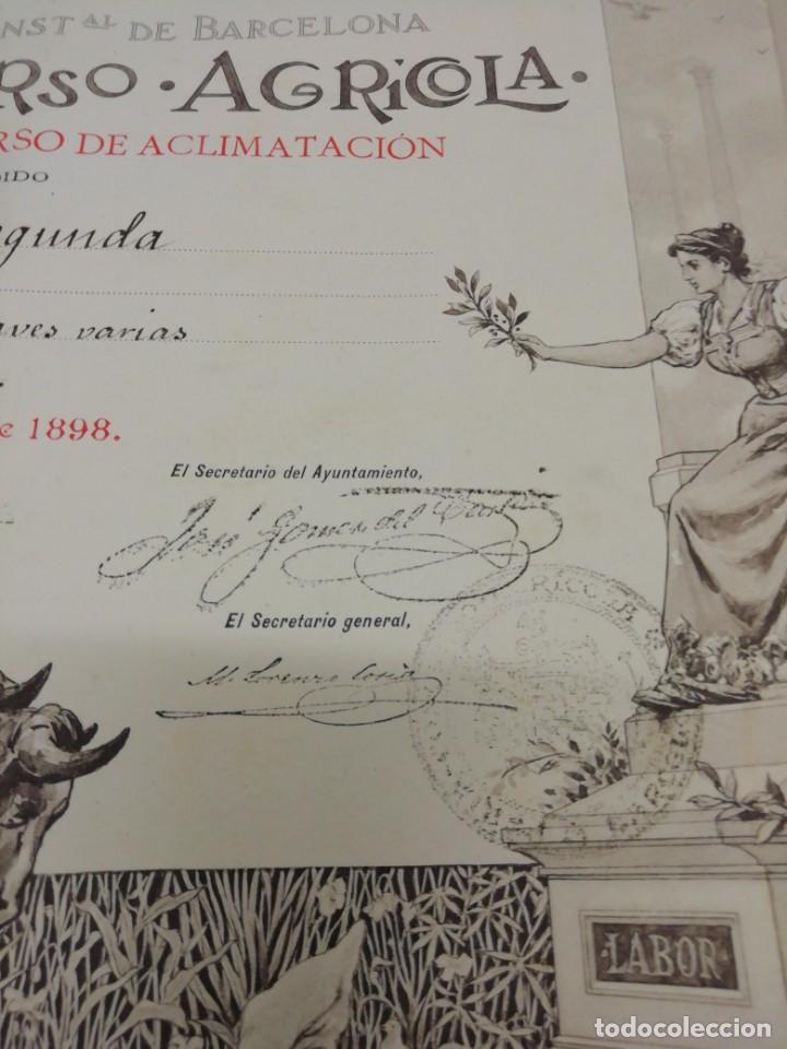 Arte: Antiguo grabado emitido por el Ayuntamiento de Barcelona. Feria, concurso, agrícola. Año 1898. - Foto 9 - 140411166