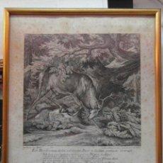Arte: GRABADO ALEMAN DE JOHANN ELIAS RIDINGER CON MARCO. CCTT. Lote 145702566