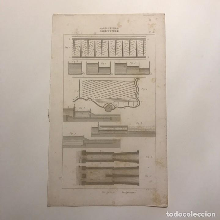 GRABADO AGRICULTURA. FRANCIA. SIGLO XVII. 14X23 CM (Arte - Grabados - Contemporáneos siglo XX)