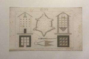 Grabados antiguos de agricultura. Francia. Siglo XVII