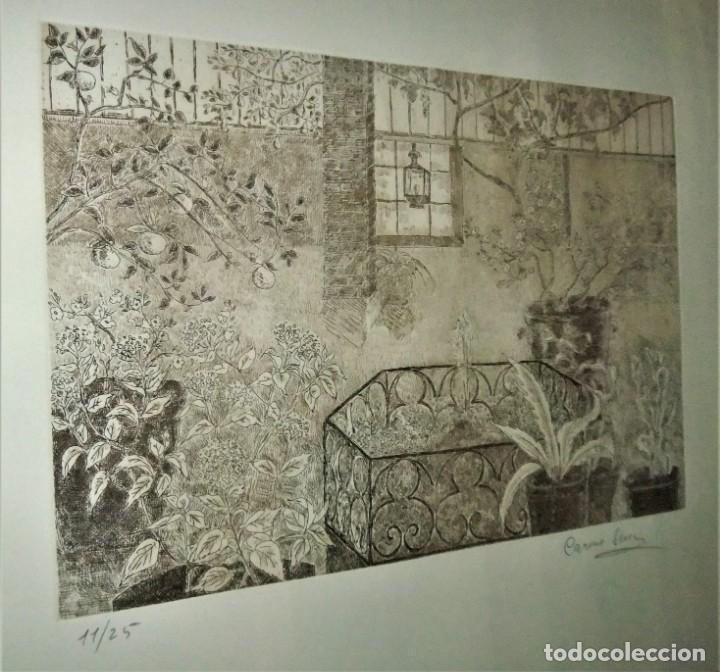 Arte: GRABADO ENMARCADO DE CARME SERRA CANTARELL - Foto 5 - 147817822