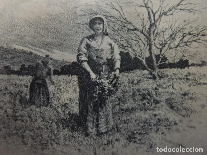 Arte: ANTIGUO GRABADO DE CAMPESINAS DE TOMÁS CAMPUZANO (1857-1934) - Foto 6 - 147826702