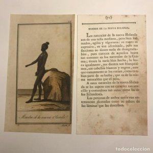 Hombre de la Nueva Holanda 1790-1800 Grabado iluminado a mano