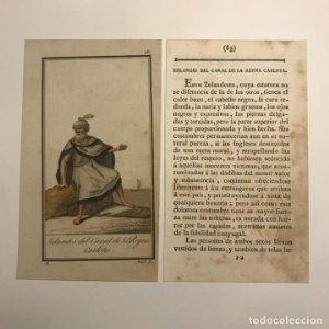 Zelandés del canal de la reina Carlota 1790-1800 Grabado iluminado a mano