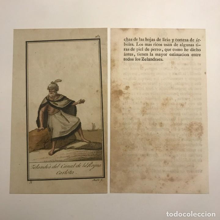 Arte: Zelandés del canal de la reina Carlota 1790-1800 Grabado iluminado a mano - Foto 2 - 148329022