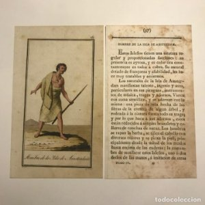 Hombre de las Islas de Amsterdam 1790-1800 Grabado iluminado a mano