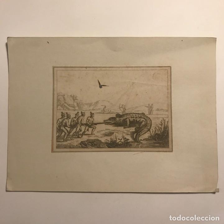 CAZADORES CON COCODRILO 26X19 CM (Arte - Grabados - Modernos siglo XIX)