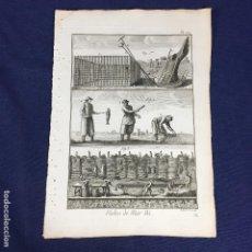 Arte: ANTIGUO GRABADO DE PESCA BERNARD DIREXIT ORIGINAL S XVIII ENCICLOPEDIA DIDEROT ET DALEMBERT PL 110. Lote 149168154