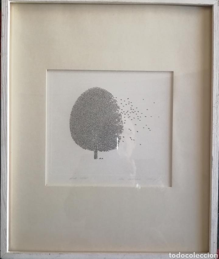 Arte: Vita Malniece, 1960, Letonia. Grabado firmado y titulado. - Foto 2 - 150377293