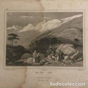 Mont liban. Cedres. Brace Bridge. Harding del. Audot édit. Ransonnette sc. 26,5x16,5 cm
