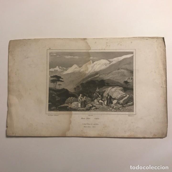 Mont liban. Cedres. Brace Bridge. Harding del. Audot édit. Ransonnette sc. 26,5x16,5 cm - 148775782