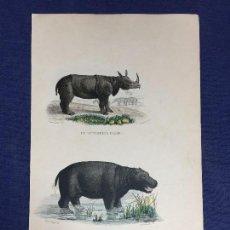 Arte: ANTIGUO GRABADO A COLOR HISTORIA NATURAL RINOCERONTE HIPOPÓTAMO PUBLICADO POR FURNE PARÍS S XIX. Lote 151343802