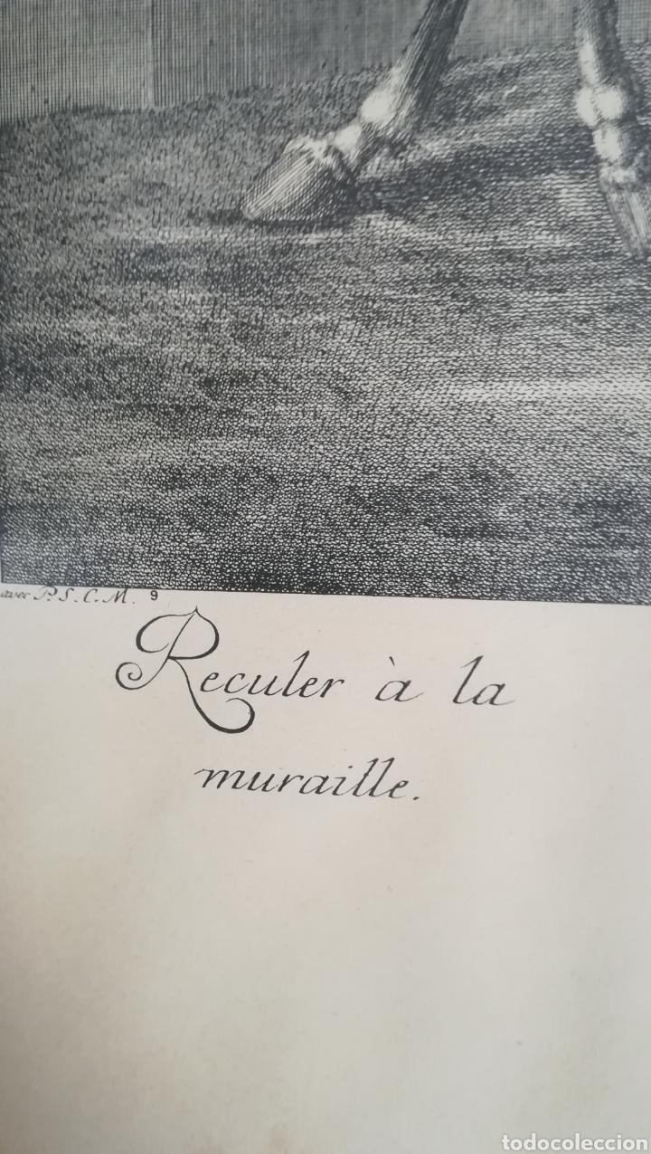 Arte: Antiguo grabado de Johan Elías Ridinger, sobre 1750 - Foto 5 - 152166861