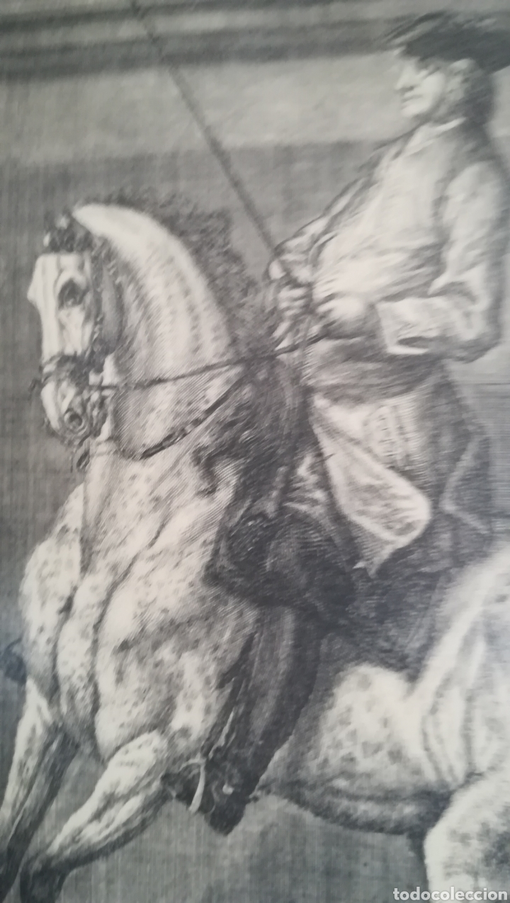 Arte: Antiguo grabado de Johan Elías Ridinger, sobre 1750 - Foto 6 - 152166861