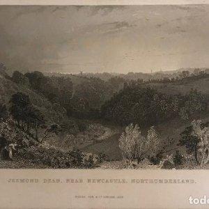 1834 Inglaterra. Jesmond Dean. Near Newcastle, Norteumberland. T.Allom. W.Le Petit 12,7x19,7 cm