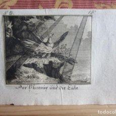 Arte: 1760-EL FÉNIX Y EL BÚHO.AVES.ANIMALES.GRABADO ORIGINAL DE G. BOHMER.DER PHEONIX UND DIE EULE. Lote 156708754
