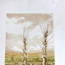 Arte: GRABADO V. ARRIBAS (AGUATINTA O AGUAFUERTE). Lote 157281426