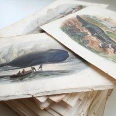Arte: ENORME LOTE DE 134 GRABADOS DEL SIGLO XIX, CINCO DE ELLOS COLOREADOS. Lote 160295082