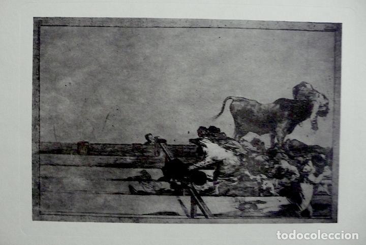 GRABADO TAUROMAQUIA GOYA (Arte - Grabados - Contemporáneos siglo XX)