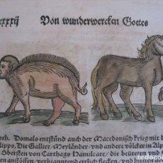 Arte: 7 GRABADOS DE AUGURIOS Y PRESAGIOS XIII, 1557. LYCOSTHENES/PETRI. Lote 168367676