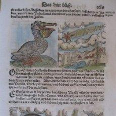 Arte: 7 GRABADOS DE AUGURIOS Y PRESAGIOS XIV, 1557. LYCOSTHENES/PETRI. Lote 168368202