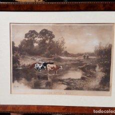 Arte: GRABADO INGLÉS ANTIGUO, PAISAJE CON VACAS. TAYLOR ADAMS. ENMARCADO DE ESTILO EPOCA. Lote 151433994
