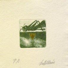 Arte: SENTO MACIÀ, GRABADO PUNTA SECA. Lote 174849333