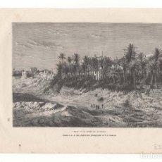 Arte: ELCHE.(ALICANTE).- GRABADO DE F.MÉAULLE S.C.- ELCHE ET SA FORET DE PALMIERS.( J LAURENT ).. Lote 177646352