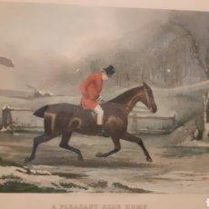 Arte: E. G. HESTER. GRABADO ORIGINAL S.XIX. CABALLOS. ENMARCADO.. Lote 177973799