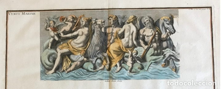 Arte: Gran grabado mitológico de la Venus marina, 1719. B. de Montfaucon - Foto 3 - 178274451