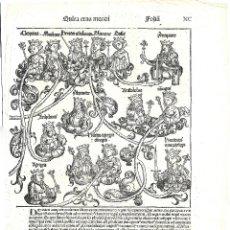 Arte: 1493 GRABADO ORIGINAL INCUNABLE LIBER CHRONICARUM / CRÓNICAS DE NUREMBERG (SCHEDEL). Lote 181625523