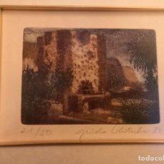 Arte: GRABADO GUIDO KOLITSCHER . Lote 183425633