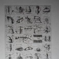 Arte: GERARDO APARICIO (MADRID, 1943-) GRABADO 1974 DE 34X49 PAPEL 47X63CMS, FIRMADO Y NUM /275. Lote 125891775