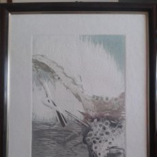 Arte: LUCIO MUÑOZ- AGUAFUERTE- 1982. Lote 184202585