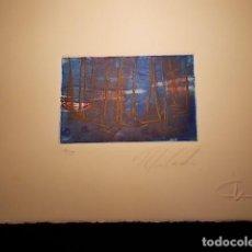 Arte: GRABADO FIRMADO Y NUMERADO. Lote 185939345
