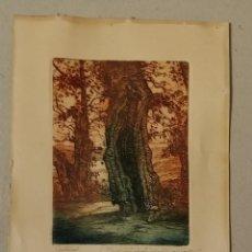 Arte: GRABADO CASTRO GIL TITULADO CASTAÑOS DIFICIL ENCONTRAR GALICIA TITULADO DEDICADO FIRMADO LAPIZ. Lote 187304248