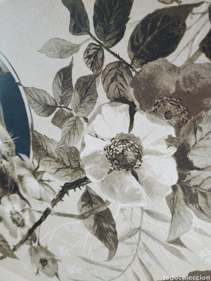 Arte: Precioso Grabado Modernista circa 1900 ANTIQUE UNIQUE - Foto 3 - 188752057