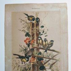 Arte: PRECIOSO GRABADO MODERNISTA CIRCA 1900 ANTIQUE UNIQUE. Lote 188752263
