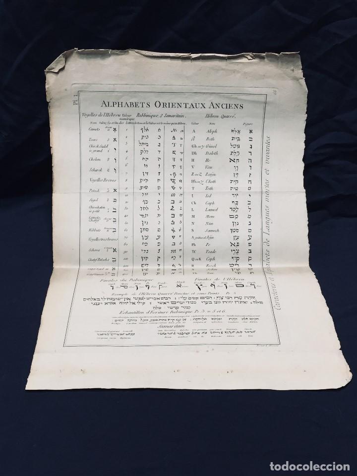 ALPHABETS ORIENTAUX ANCIENS ALFABETO ORIENTAL LENGUAS MUERTAS Y VIVAS GRABADO (Arte - Grabados - Antiguos hasta el siglo XVIII)