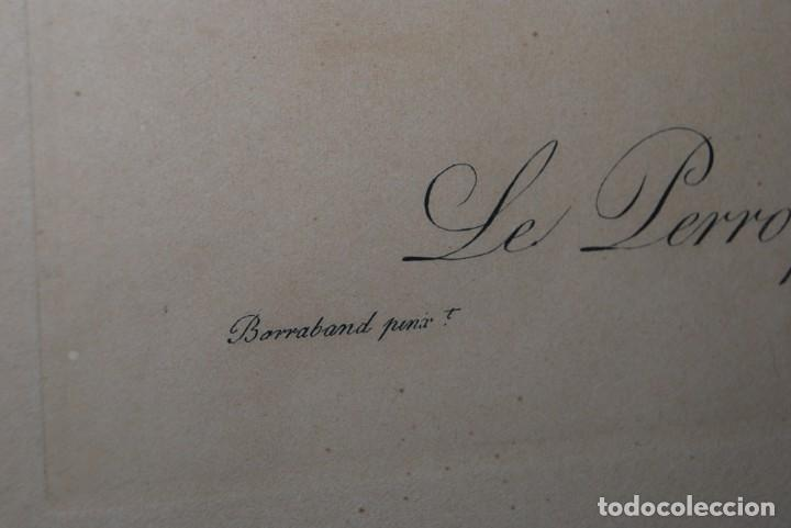 Arte: GRABADO LORO - LE PERROQUET CENDRÉ - JACQUES BARRABAND PINX. - Foto 6 - 189701476