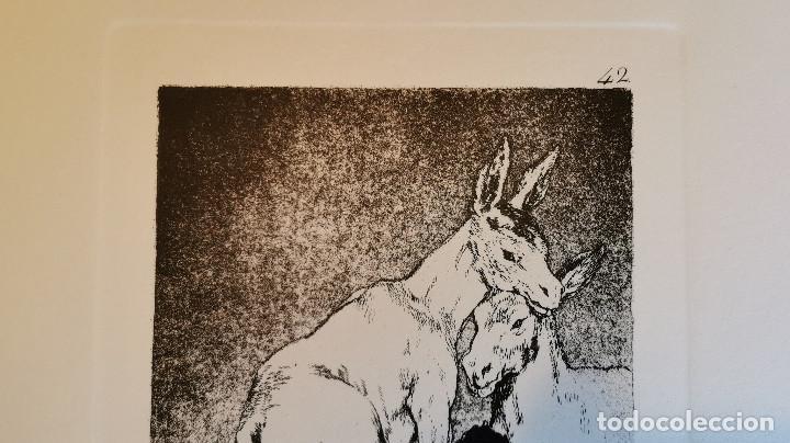 Arte: Goya,Los Caprichos n.42 Tu que no puedes,aguafuerte original directo de plancha con certificado - Foto 9 - 212763663