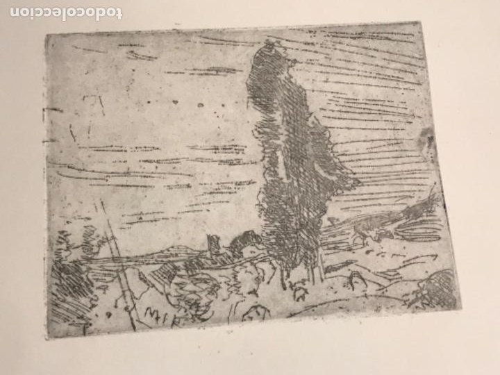 Arte: GRABADO DE JOAQUIN MIR TRINXET 1873-1940. - Foto 4 - 192819941