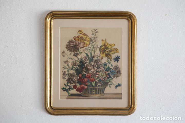 JEAN BAPTISTE MONNOYER - FLOWERS (Arte - Grabados - Antiguos hasta el siglo XVIII)