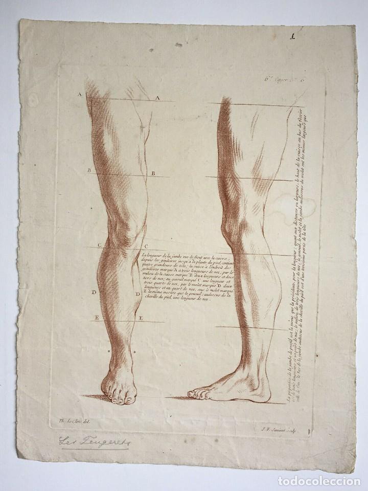 CONJUNTO DE 2 GRABADOS DEL SIGLO XVIII. ESTUDIOS PARTES DE LA ANATOMINA HUMANA. FRANCIA (Arte - Grabados - Antiguos hasta el siglo XVIII)