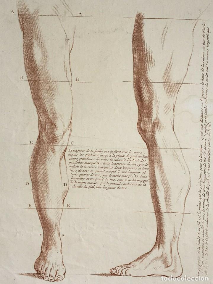 Arte: Conjunto de 2 Grabados del siglo XVIII. Estudios partes de la Anatomina Humana. Francia - Foto 3 - 194674886