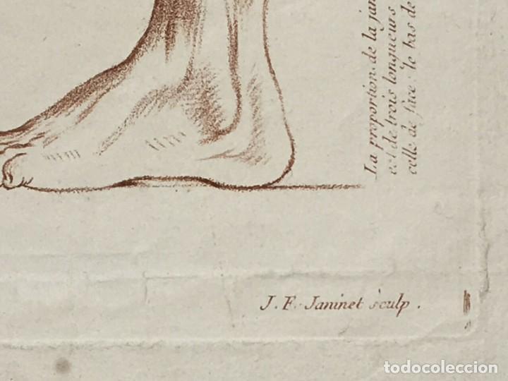 Arte: Conjunto de 2 Grabados del siglo XVIII. Estudios partes de la Anatomina Humana. Francia - Foto 7 - 194674886
