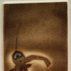 Arte: ZUSH, ALDOUS GROD, AGUAFUERTE, 1982. Lote 194922292