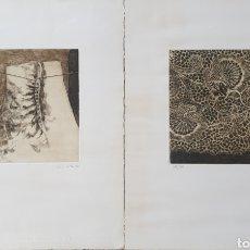 Arte: JORDI CASACUBERTA I CODINACH (OLOT, 1944) - 2 AGUAFUERTES.FIRMADOS.1982.. Lote 194971915